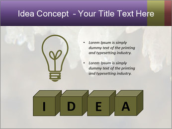 0000082906 PowerPoint Template - Slide 80