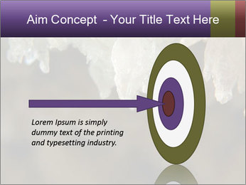 0000082906 PowerPoint Template - Slide 83