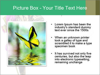 0000082910 PowerPoint Templates - Slide 13
