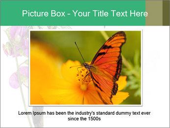 0000082910 PowerPoint Templates - Slide 15