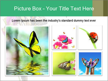 0000082910 PowerPoint Templates - Slide 19