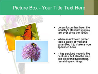 0000082910 PowerPoint Templates - Slide 20