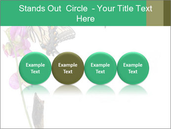 0000082910 PowerPoint Templates - Slide 76