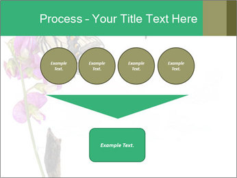 0000082910 PowerPoint Templates - Slide 93