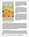0000082911 Word Templates - Page 4