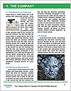 0000082913 Word Template - Page 3