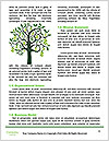 0000082918 Word Template - Page 4
