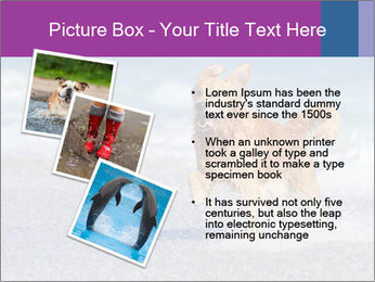 0000082930 PowerPoint Template - Slide 17