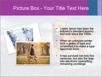 0000082930 PowerPoint Template - Slide 20