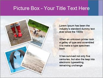0000082930 PowerPoint Template - Slide 23