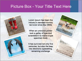 0000082930 PowerPoint Template - Slide 24