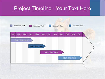 0000082930 PowerPoint Template - Slide 25