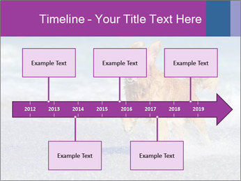 0000082930 PowerPoint Template - Slide 28