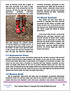 0000082930 Word Templates - Page 4
