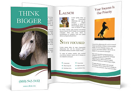 0000082935 Brochure Template