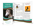 0000082935 Brochure Templates