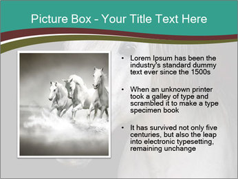 0000082935 PowerPoint Template - Slide 13