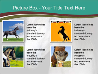 0000082935 PowerPoint Template - Slide 14