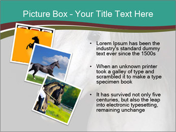 0000082935 PowerPoint Template - Slide 17
