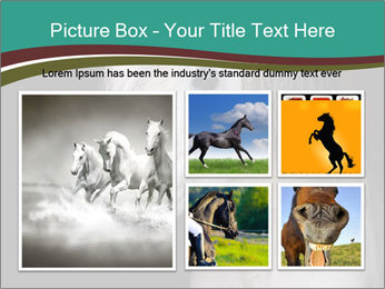 0000082935 PowerPoint Template - Slide 19