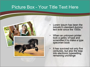0000082935 PowerPoint Template - Slide 20