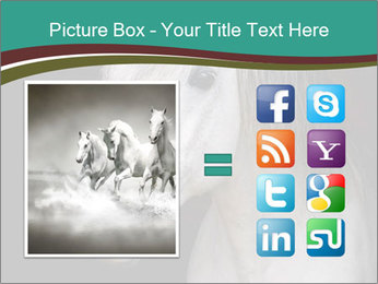 0000082935 PowerPoint Template - Slide 21