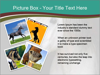 0000082935 PowerPoint Template - Slide 23
