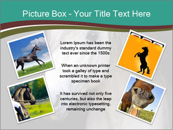 0000082935 PowerPoint Template - Slide 24