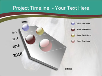 0000082935 PowerPoint Template - Slide 26
