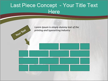 0000082935 PowerPoint Template - Slide 46