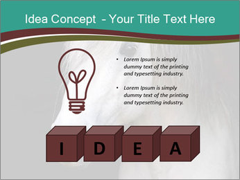 0000082935 PowerPoint Template - Slide 80