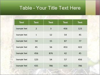 0000082941 PowerPoint Templates - Slide 55
