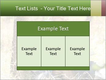 0000082941 PowerPoint Template - Slide 59