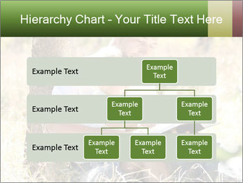 0000082941 PowerPoint Templates - Slide 67
