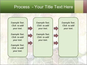 0000082941 PowerPoint Template - Slide 86