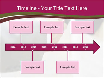 0000082943 PowerPoint Template - Slide 28