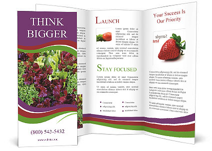 0000082953 Brochure Template