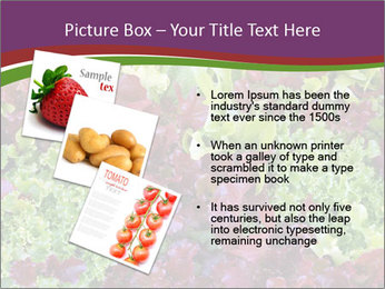 0000082953 PowerPoint Templates - Slide 17