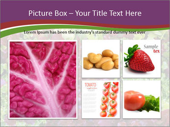 0000082953 PowerPoint Templates - Slide 19