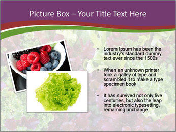 0000082953 PowerPoint Templates - Slide 20