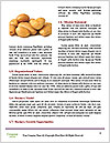 0000082953 Word Templates - Page 4