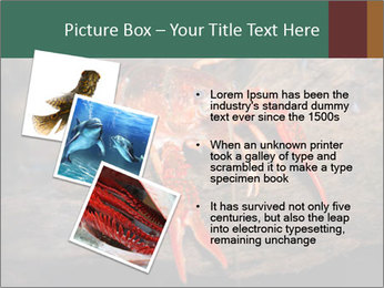 0000082955 PowerPoint Template - Slide 17
