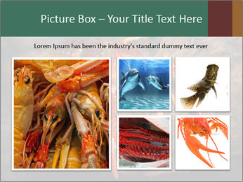 0000082955 PowerPoint Template - Slide 19