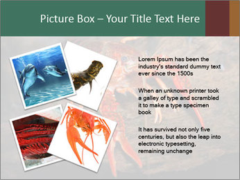 0000082955 PowerPoint Template - Slide 23