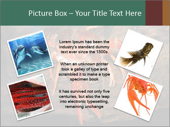 0000082955 PowerPoint Template - Slide 24