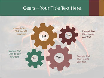 0000082955 PowerPoint Template - Slide 47