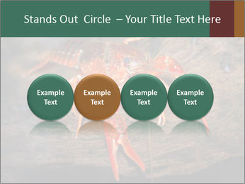 0000082955 PowerPoint Template - Slide 76