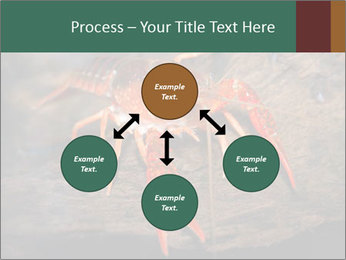 0000082955 PowerPoint Template - Slide 91
