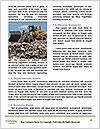 0000082959 Word Template - Page 4