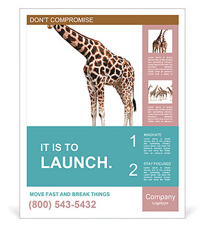0000082964 Poster Templates